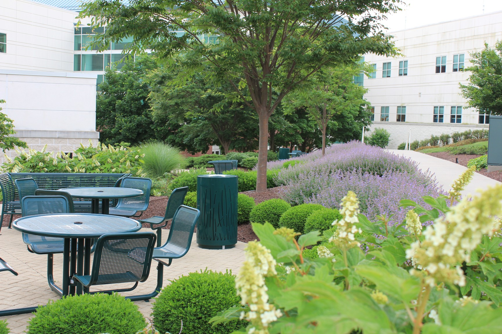 Professional landscaping for hospitals and healthcare facilities