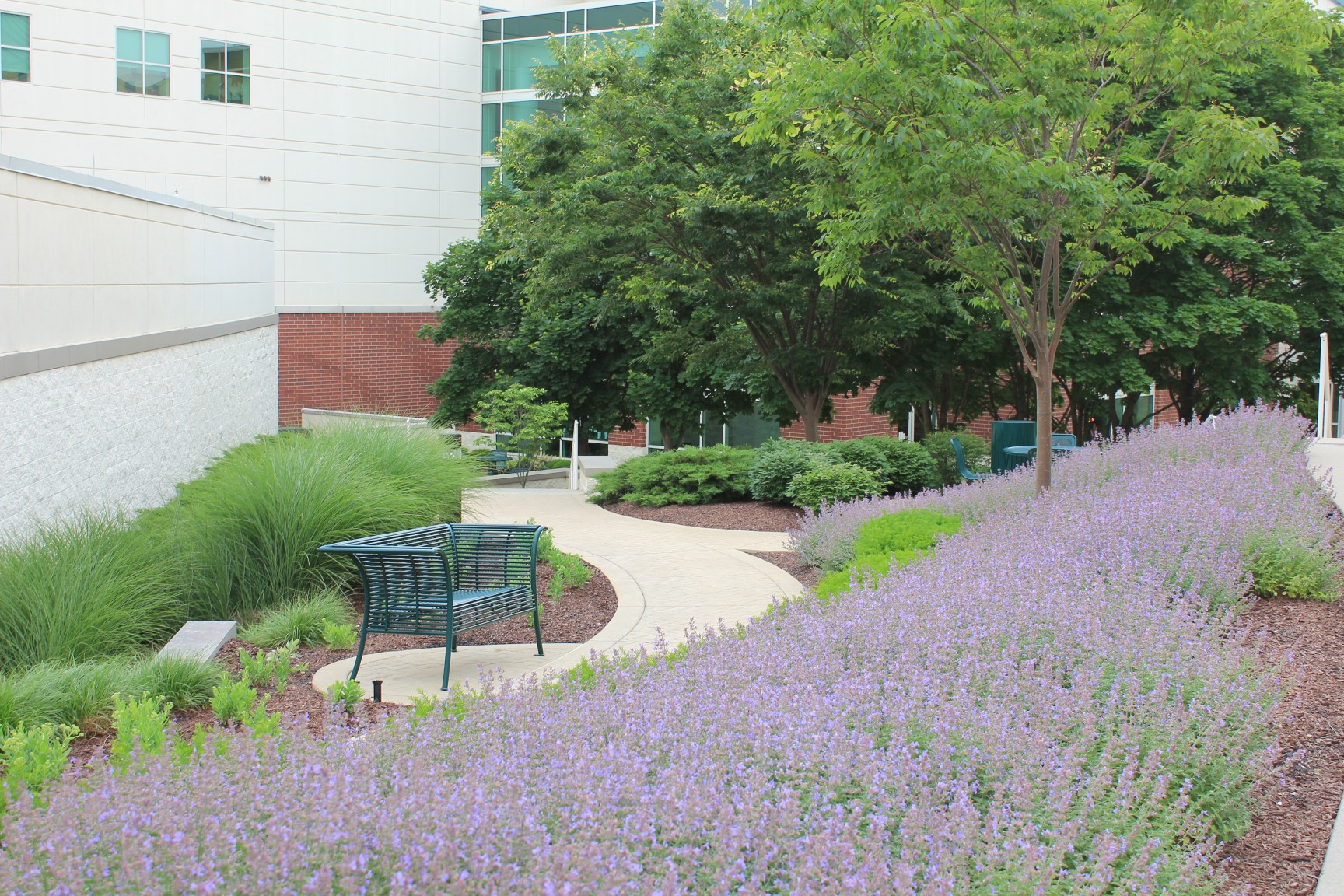 Landscape Maintenance services for hospitals and healthcare facilities.