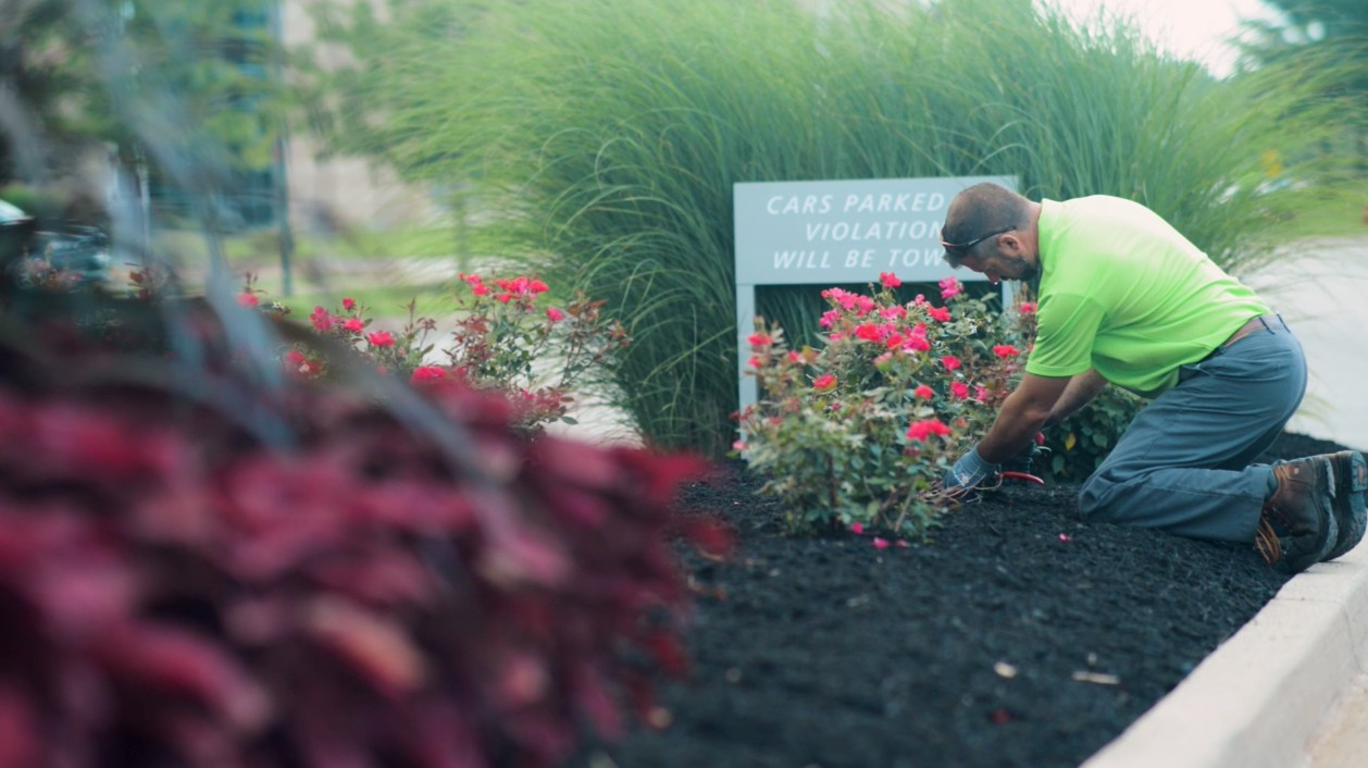 Cincinnati Commercial Landscaping Services